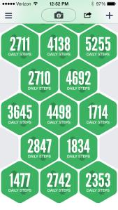 Argus Steps Data