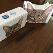 feb2016-VR-unboxing-cardboard-01