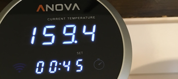 QUICK LOOK: Anova Culinary's Sous Vide Immersion Circulator